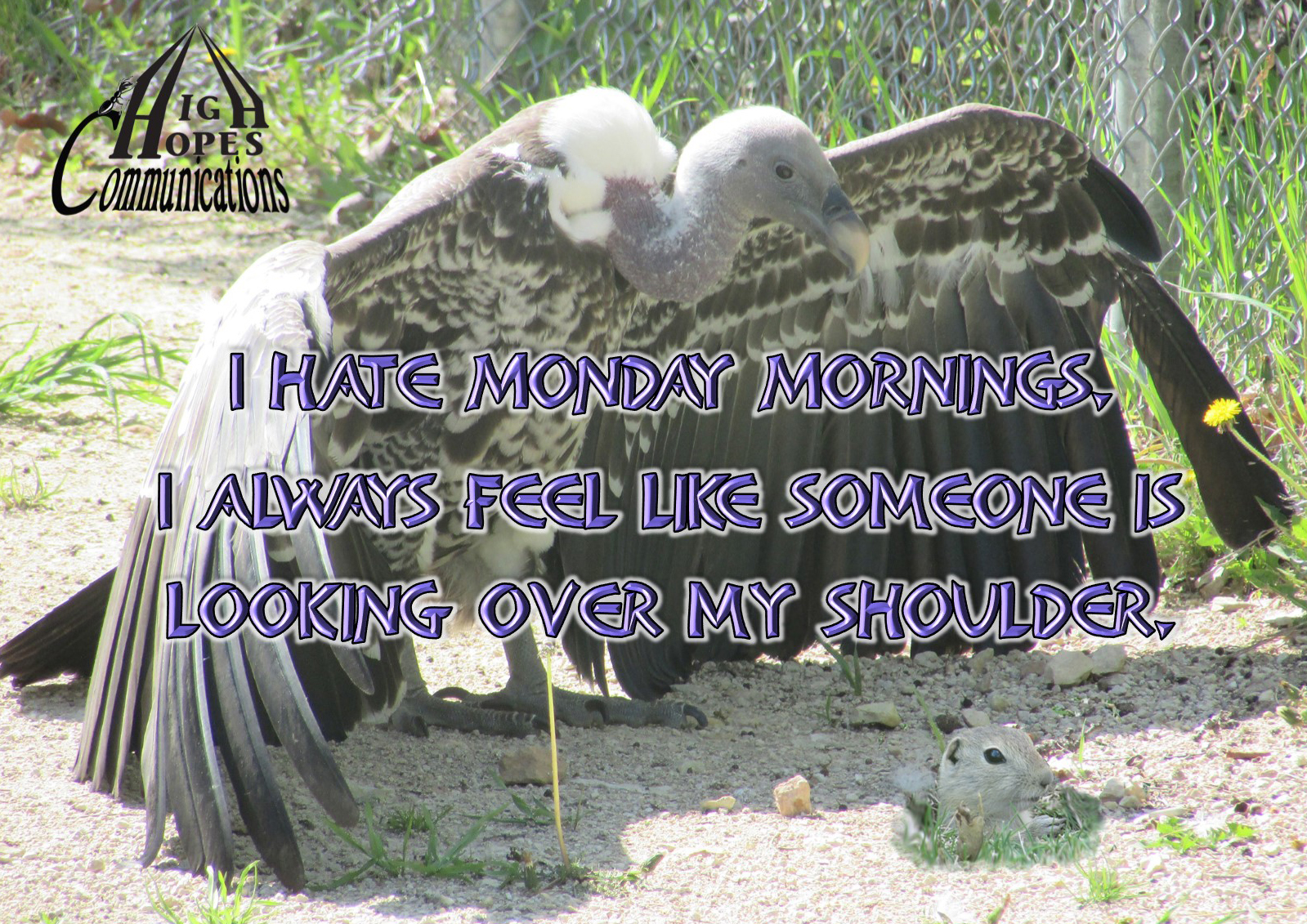 I Hate Monday Mornings.<br /> I Always Feel Like Someone is Looking Over My Shoulder.