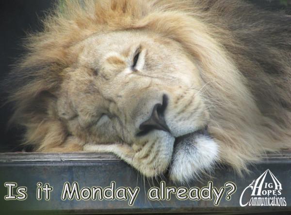 Is it Monday Already?
