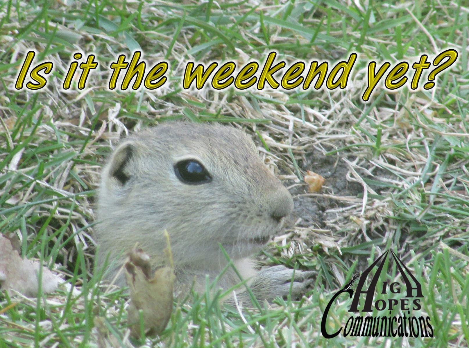 Is it the weekend yet - High Hopes Communications