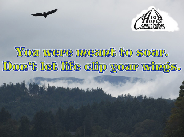 You were meant to soar.  Don't let life clip your wings.
