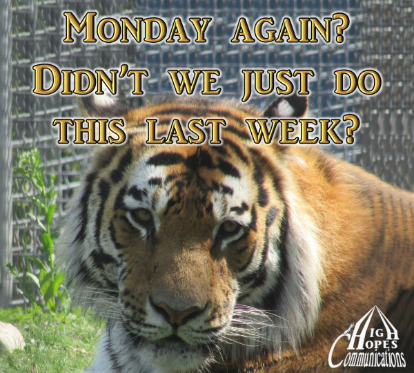 Monday again? Didn't we just do this last week?