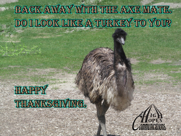 Back away with the axe mate. Do I look like a turkey to you? Happy Thanksgiving.
